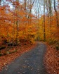 201209-a-best-fall-drives-adirondacks